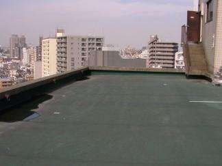 屋根(修繕前)