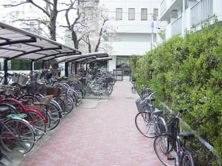 自転車が溢れた歩道・駐輪場を改善